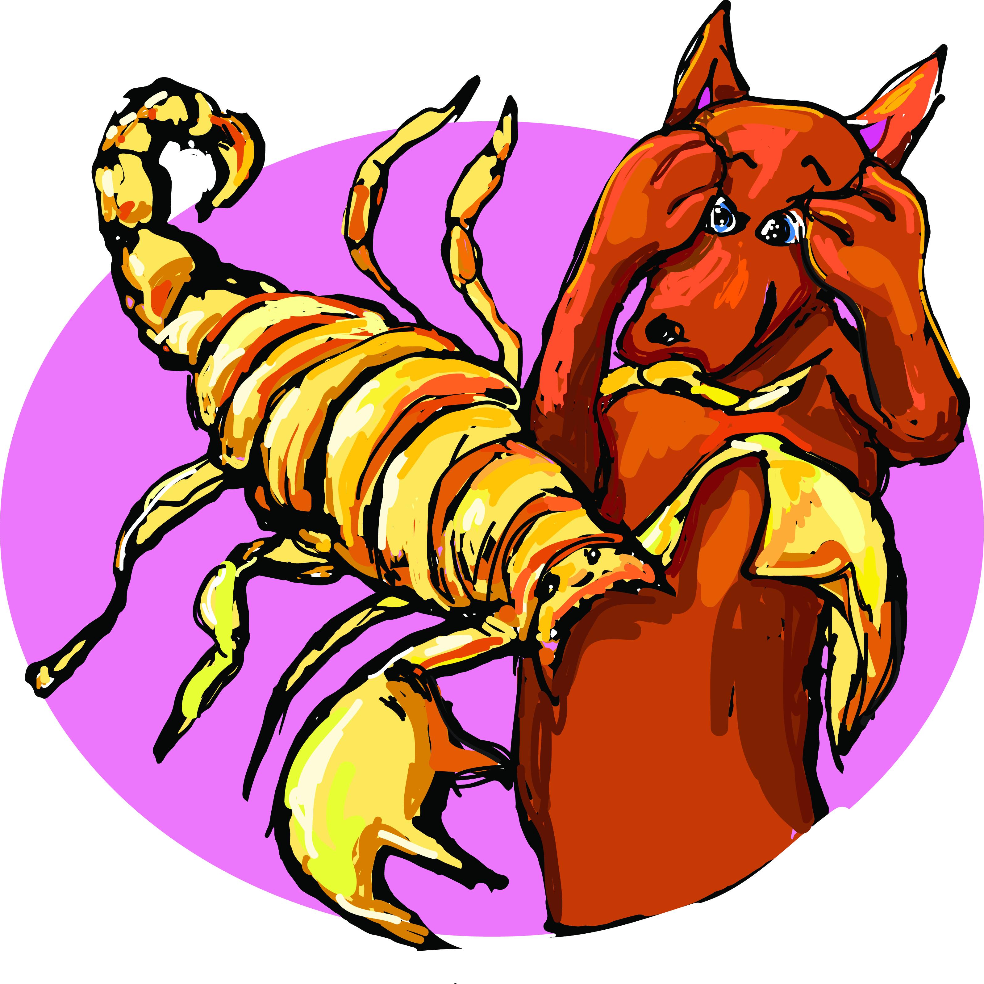 Horoscoop voor Me & My Dog Schorpioen